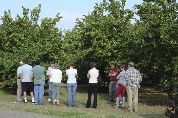 Discovering Willamette Valley Agriculture